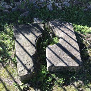 Edu Sentis - Serdenya 2019 ferradas (111)