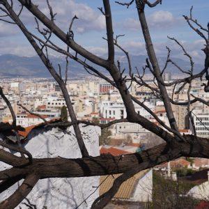 Edu Sentis Viaje Italia-Grecia 50 años (10)